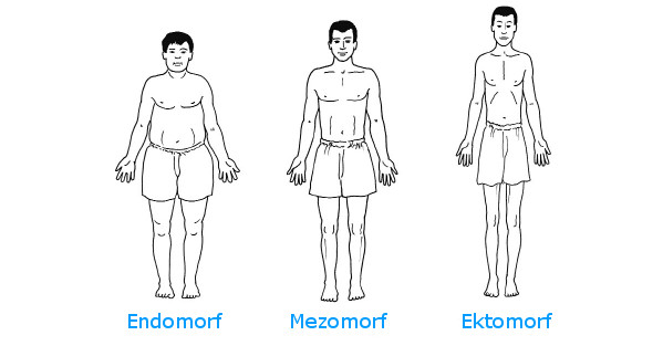 Somatotypy člověka - ketogenní dieta | onefit.cz