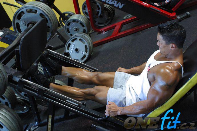 Testosteron je důležitý pro budování svalové hmoty | onefit.cz