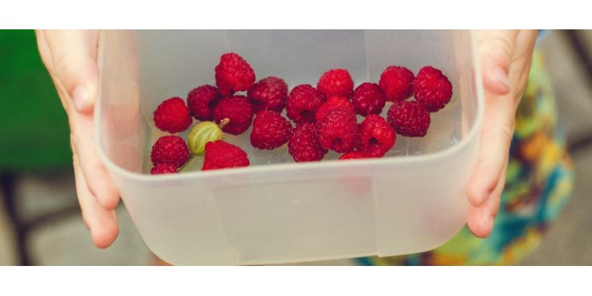 Plastové krabičky na jídlo - vše, co potřebujete o nich vědět