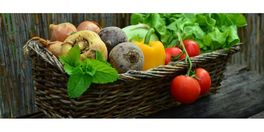 Zinek a vitamin C - vitaminy pro sportovce
