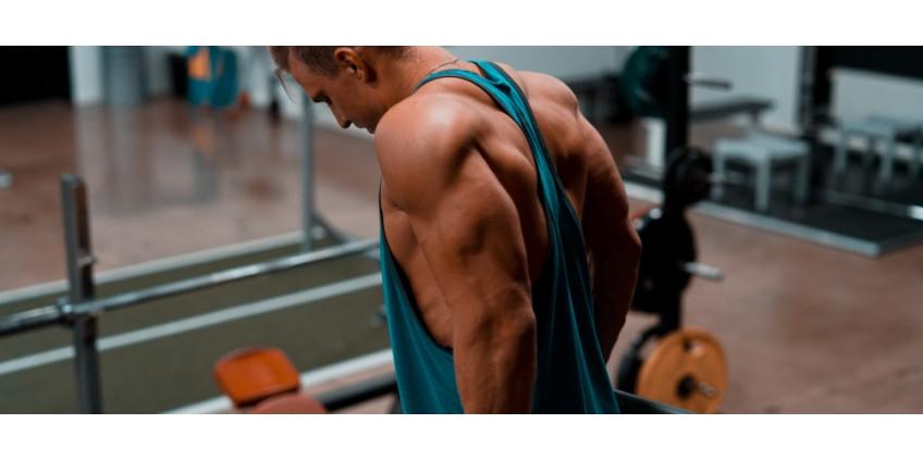 Cviky na tricepsy a jejich objem